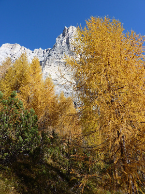 autunno_valdizoldo