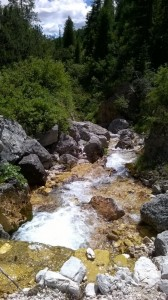 torrente_rutorto_Eliana_Santin