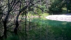 lago-streghe-zoldo-bosconero