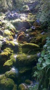 cascatelle-acqua-bosconero-zoldo