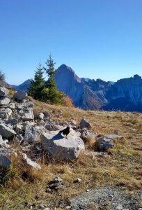 monte_rite_panorama_eliana_santin_2016