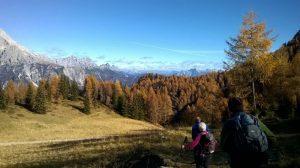 sentiero_naturalistico_monte_rite_eliana_santin_2016